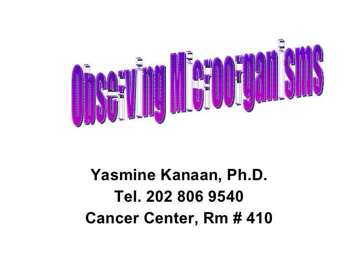 Yasmine Kanaan, Ph.D. Tel. 202 806 9540 Cancer Center, Rm # 410 Observing Microorganisms