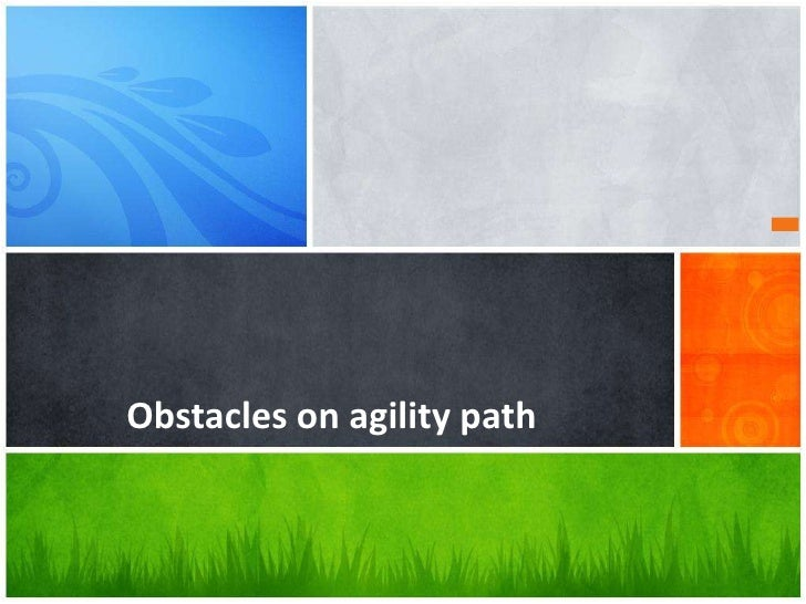 Obstacles on agility path<br />