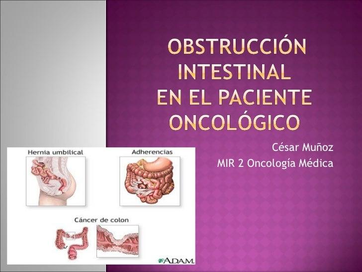 César Muñoz MIR 2 Oncología Médica