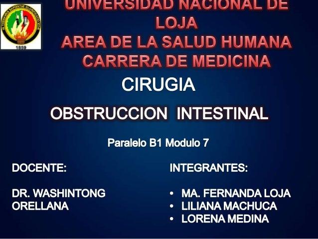 La obstrucción u oclusión intestinal, consiste en la detención completa y persistente del contenido intestinal en tramos d...