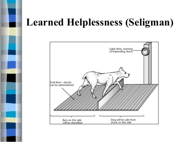 Learned Helplessness - What It Is and Why It Happens