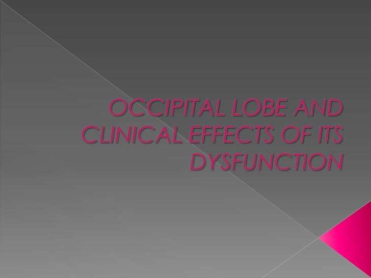 Occipital lobe and clinical effects of its dysfunction