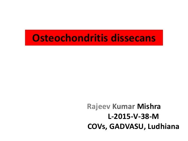 review of osteochondritis dessicans in horses Ocd pellets is effective in the treatment of equine: ocd, osteochondrosis, (osteochondritis dissecans), bone cysts, djd (degenerative joint disease), epiphysitis.