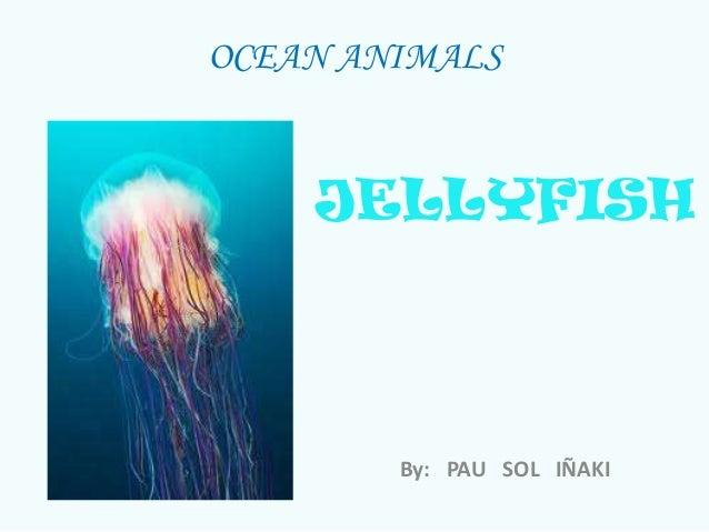 OCEAN ANIMALSJELLYFISHBy: PAU SOL IÑAKI