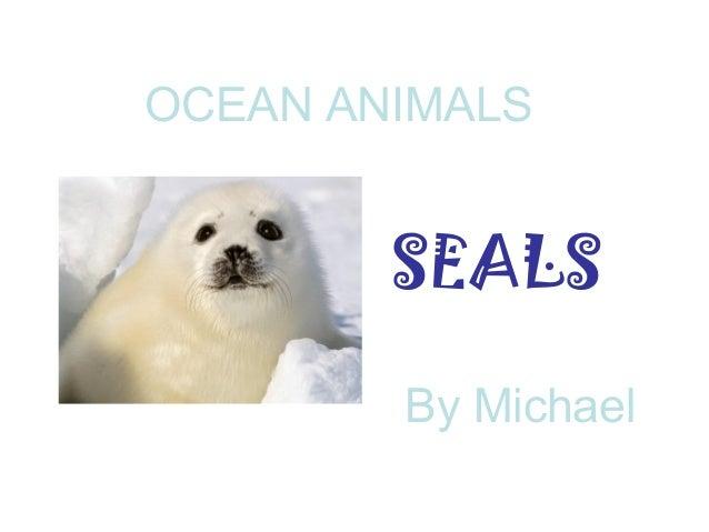 Ocean animals power point1