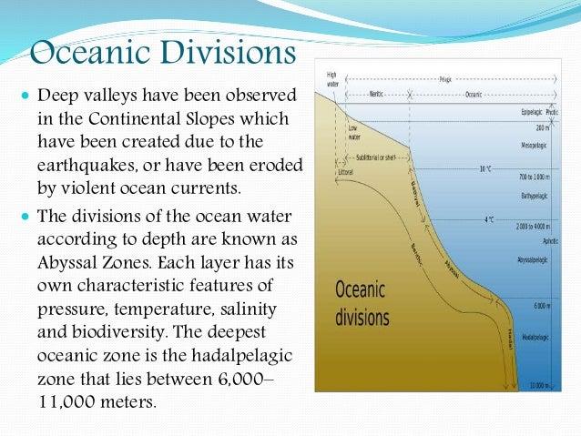 the ocean essays