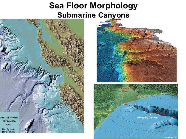 Ocean morphology