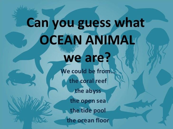 Ocean riddles