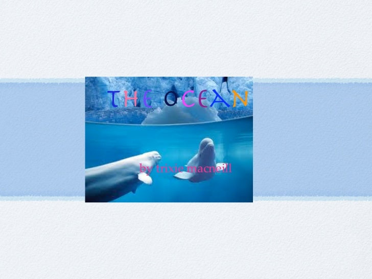 the ocean  by trixie macneill