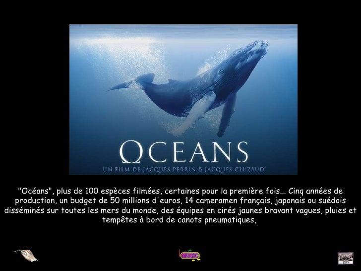 """""""Océans"""", plus de 100 espèces filmées, certaines pour la première fois... Cinq années de production, un budget d..."""