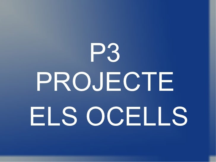 P3 PROJECTE ELS OCELLS