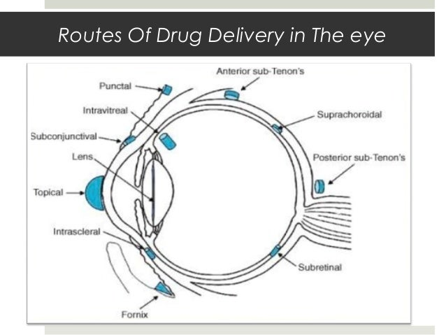 drug design phd thesis