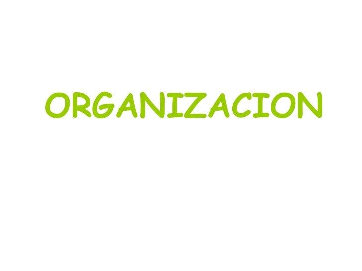 Ode D 11 Organizacion