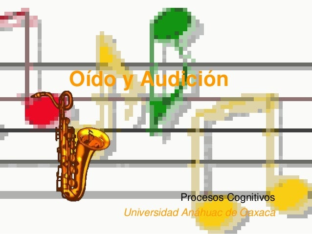 Oído y Audición Procesos Cognitivos Universidad Anáhuac de Oaxaca