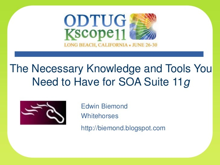 The Necessary Knowledge and Tools You Need to Have for SOA Suite 11g<br />Edwin Biemond<br />Whitehorses<br />http://biemo...