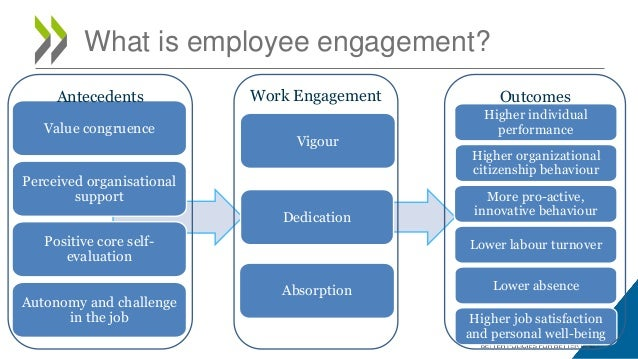 hrm practices on employee commitment and turnover intent The impact of human resource management practices on employees' turnover intention: a conceptual model  employee commitment therefore revealed that strategic .