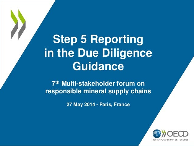 Step 5 Reporting in the Due Diligence Guidance 7th Multi-stakeholder forum on responsible mineral supply chains 27 May 201...