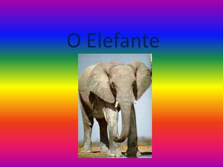 O Elefante<br />