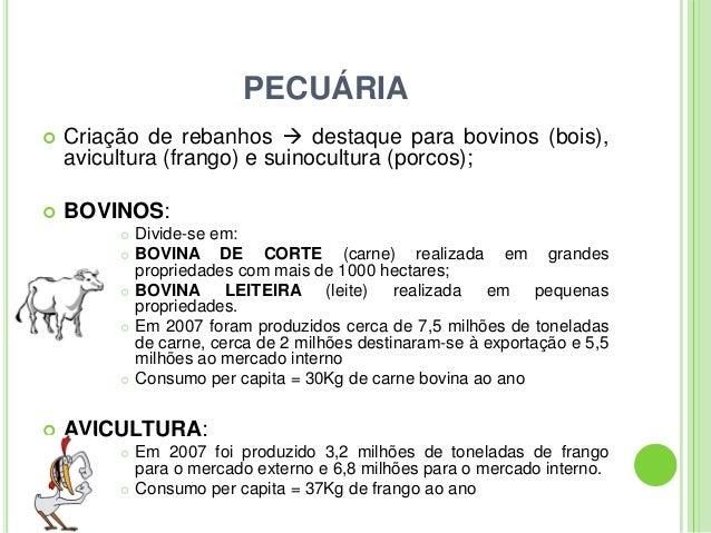 PECUÁRIA Criação de rebanhos  destaque para bovinos (bois),avicultura (frango) e suinocultura (porcos); BOVINOS: Divid...