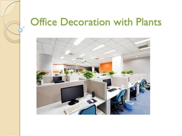 Office Decoration with Plants