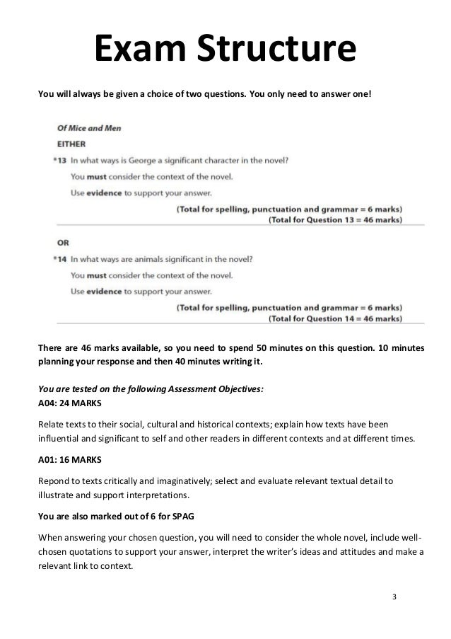 English Literature How To Write An Essay