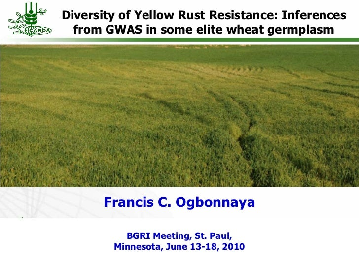 Diversity of Yellow Rust Resistance: Inferences  from GWAS in some elite wheat germplasm      Francis C. Ogbonnaya        ...