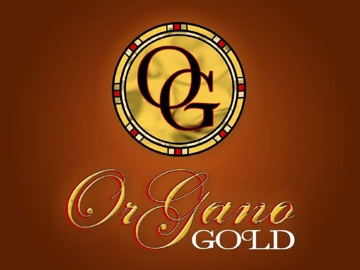 Organo Gold Fundraiser Program