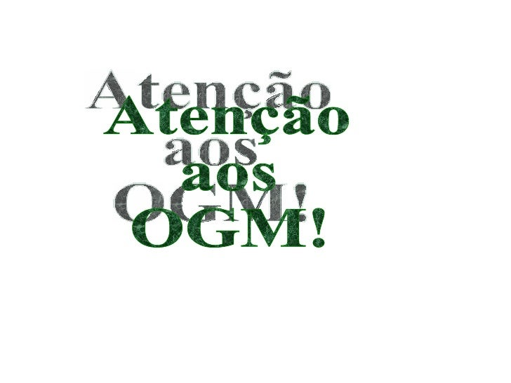 Ogm video
