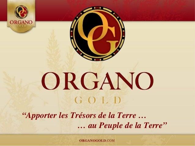 Organo Gold presentation francais