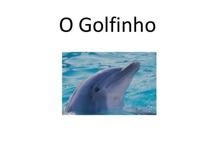O Golfinho<br />