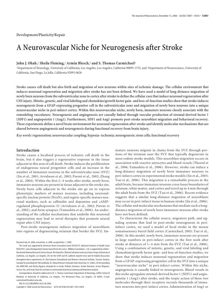 A Neurovascular Niche for Neurogenesis after Stroke