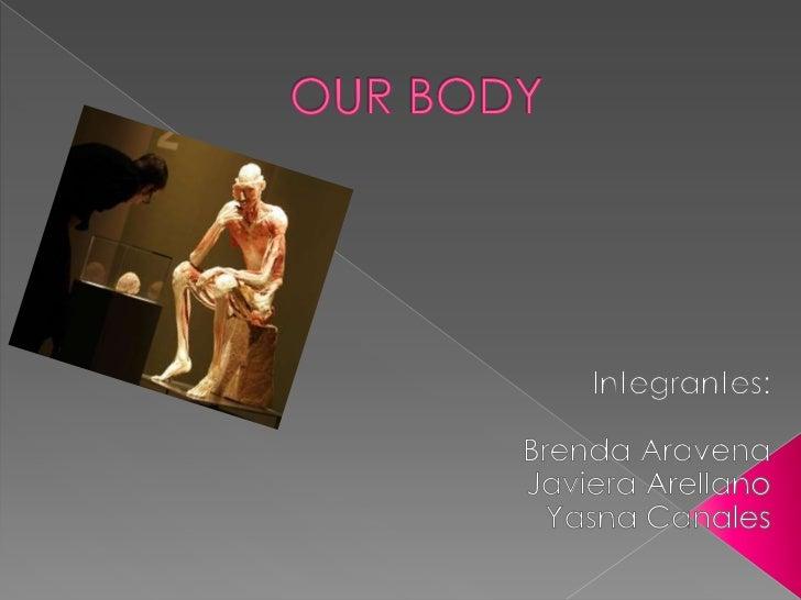 OUR BODY<br />Integrantes:<br />Brenda Aravena<br />Javiera Arellano<br />Yasna Canales<br />