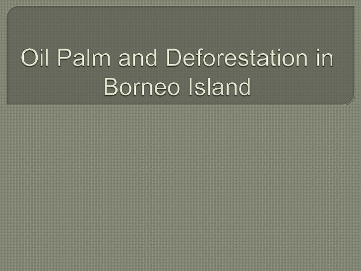 Oil palm plantation and deforestation in malaysia