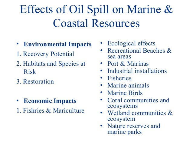 Oil Effects Effects of Oil Spill on Marine
