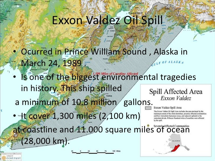 the details of the exxon valdez oil spill and its consequences Updated: aug 3, 2010 in march 1989, the exxon valdez supertanker ran aground on bligh reef, ruptured and spilled 11 million gallons of crude oil into alaska's prince william sound.
