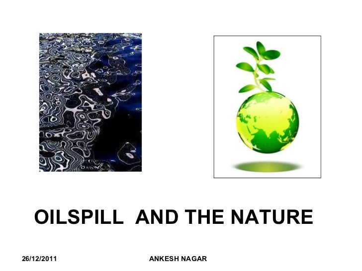 OILSPILL  AND THE NATURE