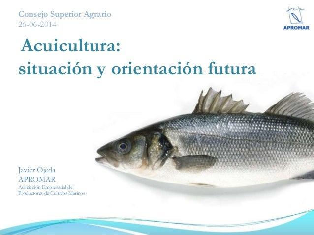 Consejo Superior Agrario 26-06-2014 Acuicultura: situación y orientación futura Javier Ojeda APROMAR Asociación Empresaria...