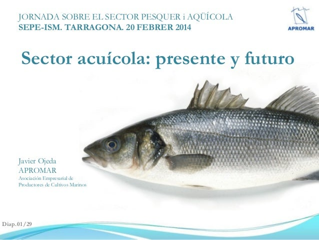 JORNADA SOBRE EL SECTOR PESQUER i AQÜÍCOLA SEPE-ISM. TARRAGONA. 20 FEBRER 2014  Sector acuícola: presente y futuro  Javier...