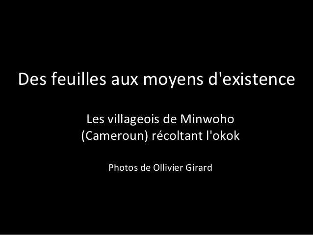 Des feuilles aux moyens d'existence: Les villageois de Minwoho (Cameroun) récoltant l'okok