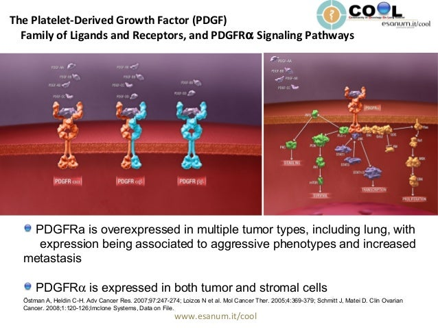www.esanum.it/cool The Platelet-Derived Growth Factor (PDGF) Family of Ligands and Receptors, and PDGFRα Signaling Pathway...