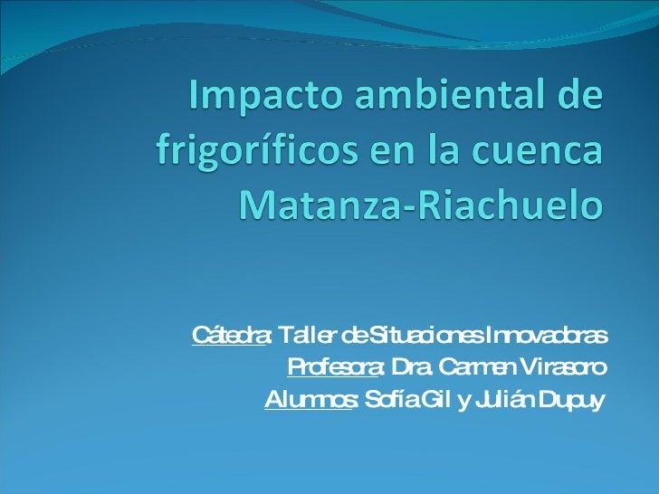 Cátedra : Taller de Situaciones Innovadoras Profesora : Dra. Carmen Virasoro Alumnos : Sofía Gil y Julián Dupuy