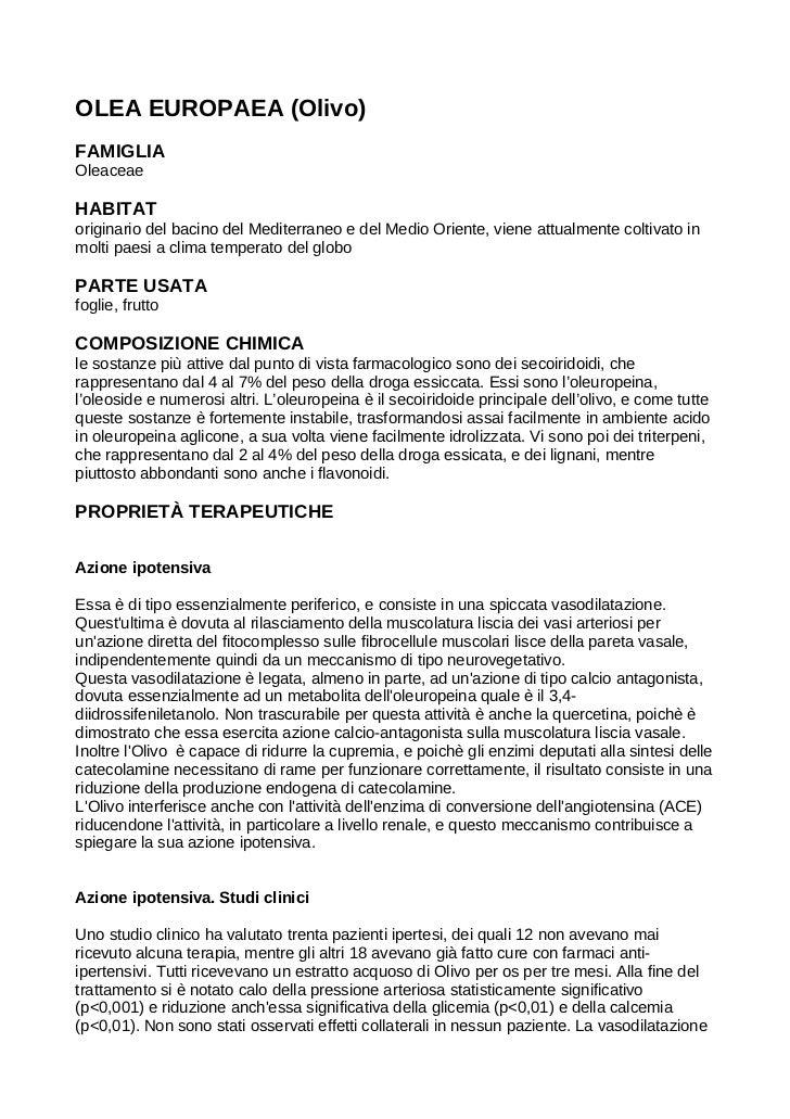 I benefici dell'utilizzo dell'Olea europaea (Olivo) in medicina