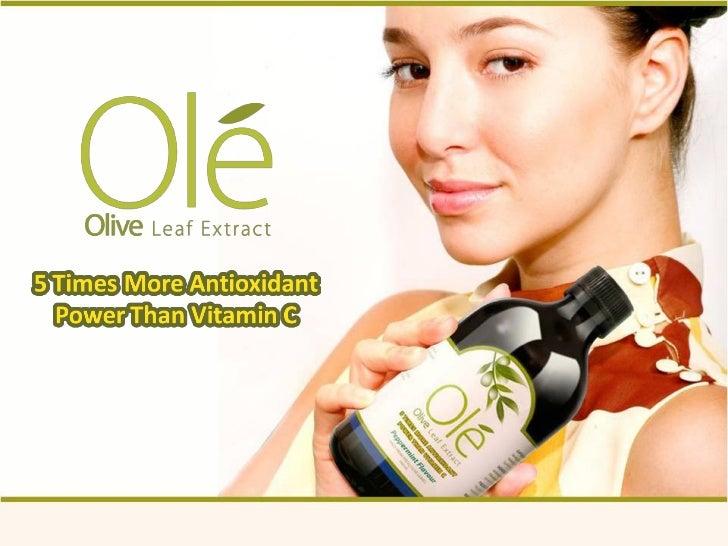 Faits sur feuilles d olivier• Le défenseur naturel de votre système immunitaire• Une riche source dantioxydants• Présente ...
