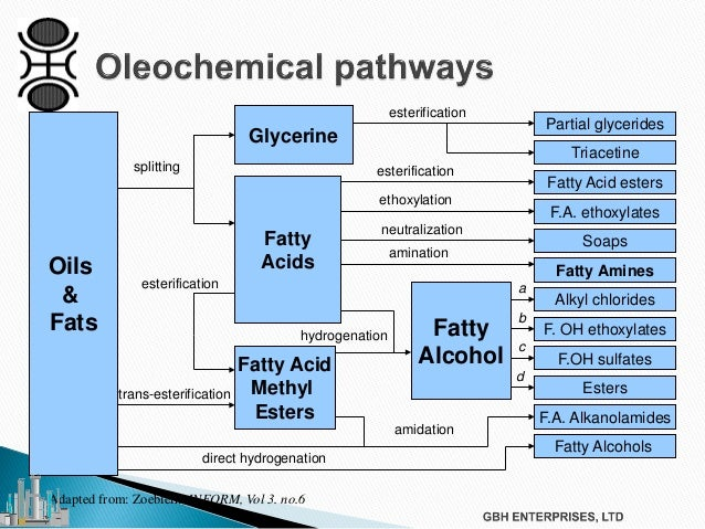 Oleochemicals and Catalysts Used