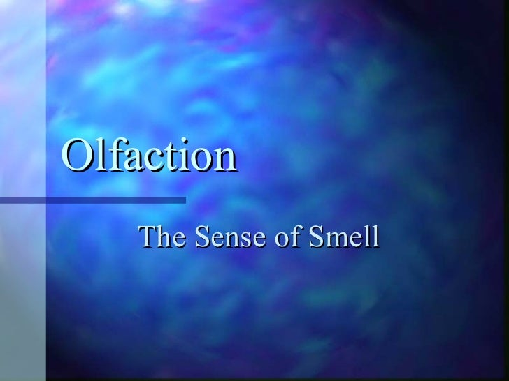Olfaction The Sense of Smell