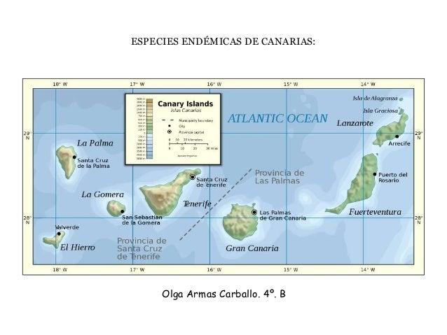 ESPECIES ENDÉMICAS DE CANARIAS:  Olga Armas Carballo. 4º. B