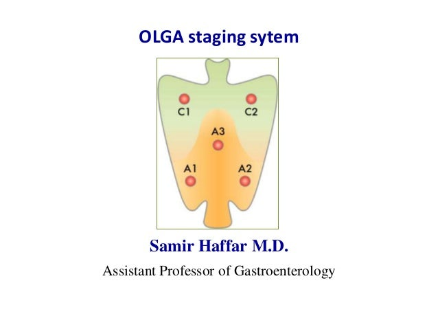 Olga staging system for diagnosis of gastritis