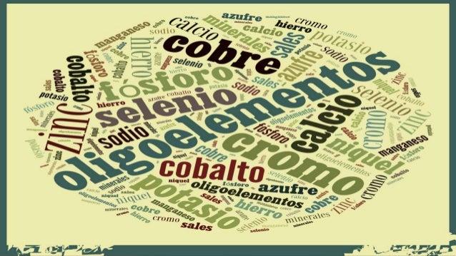 LOS OLIGOELEMENTOS • En este grupo encontramos el hierro(Fe), cobre(Cu), yodo(I), cobalto(Co), silicio(Si), cromo(Cr), zin...