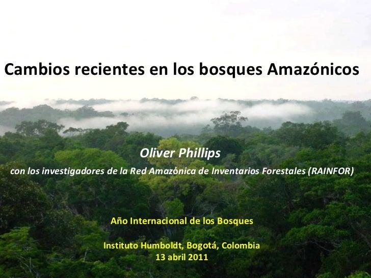 Cambios recientes en los bosques Amazónicos Oliver Phillips  con los investigadores de la Red Amaz ó nica de Inventarios F...
