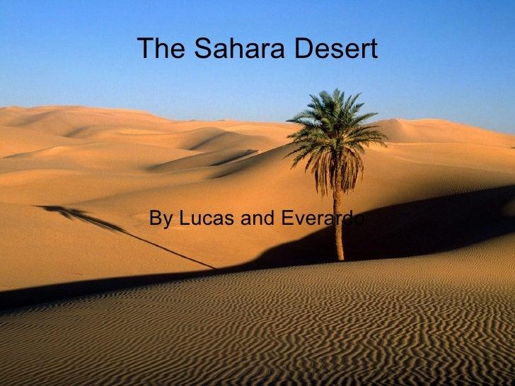 The Sahara Desert By Lucas and Everardo